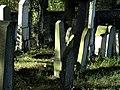 Trhový Štěpánov, židovský hřbitov - panoramio (14).jpg