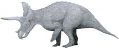 Triceratops by Tom Patker.png