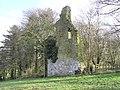 Trillick Castle - geograph.org.uk - 121961.jpg