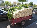 Truck of dabaicai in Lindong.jpg