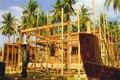 Tsunami rebuild 6cm.tif