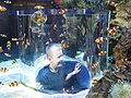 Two Oceans Aquarium01.jpg