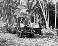 US tanks in Guadalcanal (closeup, hi res).jpg