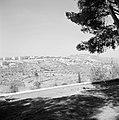 Uitzicht vanuit de schaduw van een boom op de berg, Bestanddeelnr 255-2439.jpg