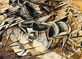 Umberto Boccioni - Charge of the Lancers.jpg