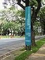University of São Paulo (March 2018) 05.jpg