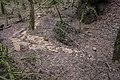 Unterwald-Ponor 03.jpg