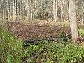 Upper Pine Bottom State Park Foundation 2.jpg