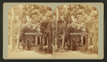 Ute Pass house, by Gurnsey, B. H. (Byron H.), 1833-1880.png