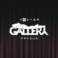 VOAYER GALLERY.png