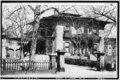 Valentine-Fuller House & Garden - 079853pu.tif