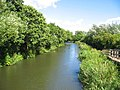 View East from bridge crossing River Kennet - geograph.org.uk - 35396.jpg