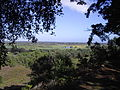 View from St. Catherine's Hill, Hampshire.jpg