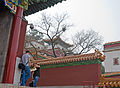 View up back hill at Summer Palace, Beijing.jpg