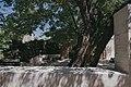 Views around Lalish and of Ezidi pilgrims and worshippers there 10.jpg