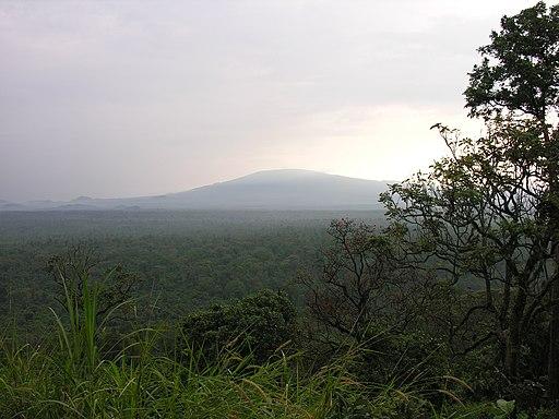 Virunga National Park-107997