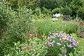 Vlindertuin in voorjaar.jpg