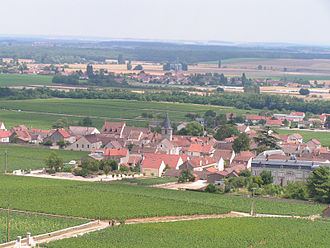 Côte de Nuits - Village and vineyards around Vosne-Romanee.