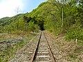 Wainai, Miyako, Iwate Prefecture 028-2105, Japan - panoramio.jpg