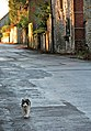 Walking the street - geograph.org.uk - 1075455.jpg