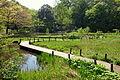 Walkway - Institute for Nature Study, Tokyo - DSC02125.JPG