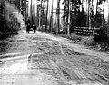 Warrenite laid on Bothell Road, Washington, May 8, 1912 (INDOCC 448).jpg