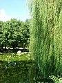 Weicheng, Weifang, Shandong, China - panoramio (21).jpg