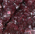 Wendwilsonite-247623.jpg