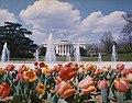 White House Spring 1975 D.jpg