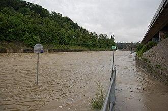 Wien (river) - The Wien River in flood stage near the Bräuhaus Bridge, June 2009.