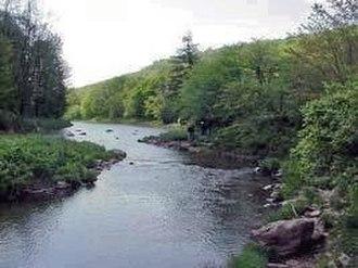 Williams River (West Virginia) - Image: Williams River WV