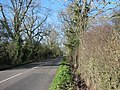Wincanton to Buckhorn Weston Road - geograph.org.uk - 327615.jpg