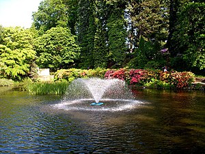 Wojsławice Arboretum - A fountain in the arboretum