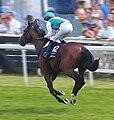 Workforce (horse) at 2010 Epsom Derby.jpg