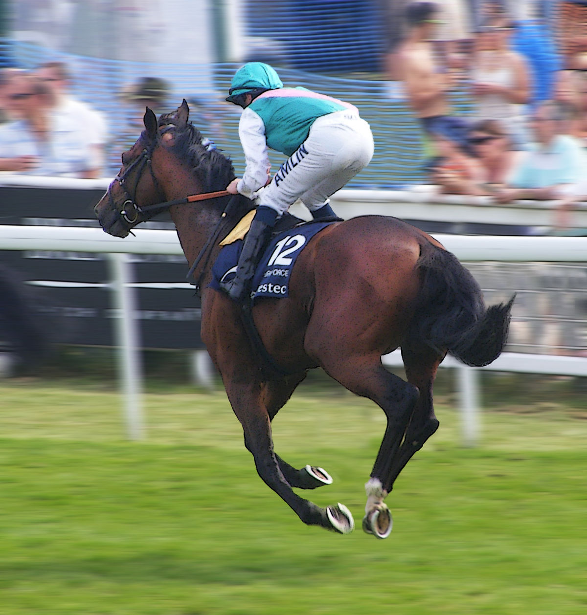 Workforce horse wikipedia for 2b cuisine epsom downs