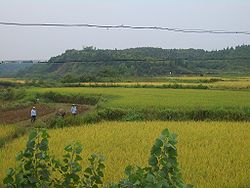 In the fields just south of Xianning's city centre