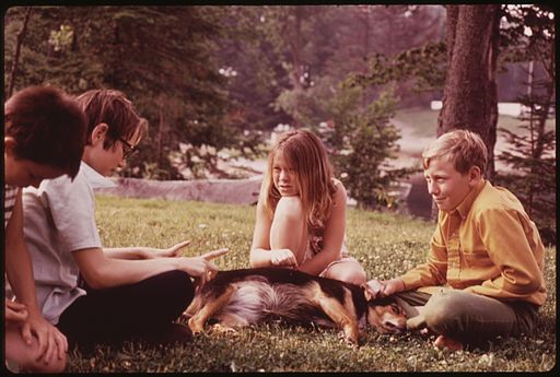 YOUNGSTERS PLAYING WITH DOGS AT STILLWATER, NEW YORK, NEAR THE ADIRONDACK FOREST PRESERVE - NARA - 554497