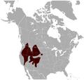 Yellow-bellied Marmot Marmota flaviventris distribution map.png