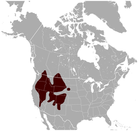 Yellow-bellied Marmot Marmota flaviventris distribution map.png