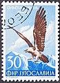 Yugoslavian stamp with Gypaetus barbatus 1954.jpg