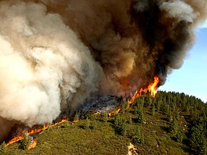 Climate of California - Active flame front of the Zaca Fire, the second largest fire on record in California