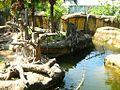 Zoologico de Taipei - panoramio (5).jpg