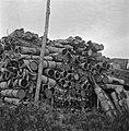 Zuid-Nederland. Reportage over de gevaren van mijnen en achtergelaten munitie vo, Bestanddeelnr 901-2843.jpg