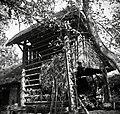 """""""Kozouc"""" (kozolec)- podstrešek, Sv. Vrh 1951.jpg"""
