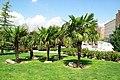 ® MADRID VERDE JARDIN SAN FRANCISCO EL GRANDE - panoramio - Concepcion AMAT ORTA… (13).jpg