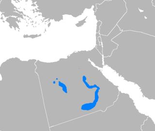 Saʽidi Arabic