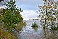 Überflutetes Elbufer Hamburg-Rissen - Orkan Gonzalo (22.10.2014) 04.jpg