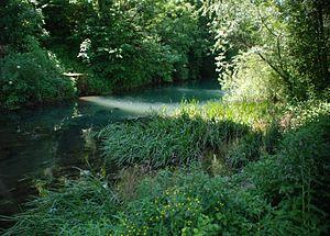 Dobličica - Dobličica Creek in Črnomelj