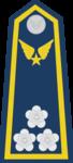 Đại Tá-Airforce 2.png