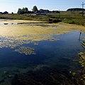 Арсеновский карстовый источник - panoramio (1).jpg